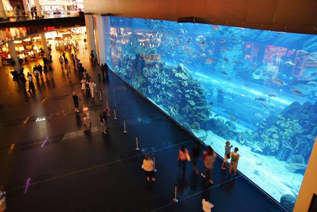 Аквариум Дубая