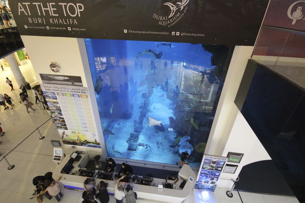 Кассы аквариума в Дубай Молл.