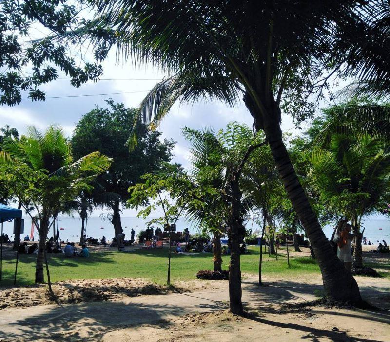 Зеленая зона на пляже Сай Кео